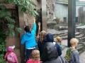 Im Zoo mit dem Bären auf Augenhöhe